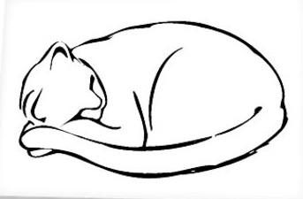 dessin_de_chat (1)