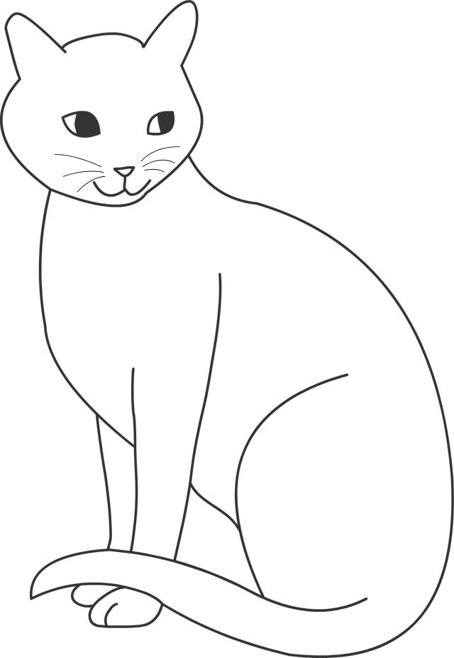 dessin_de_chat (6)