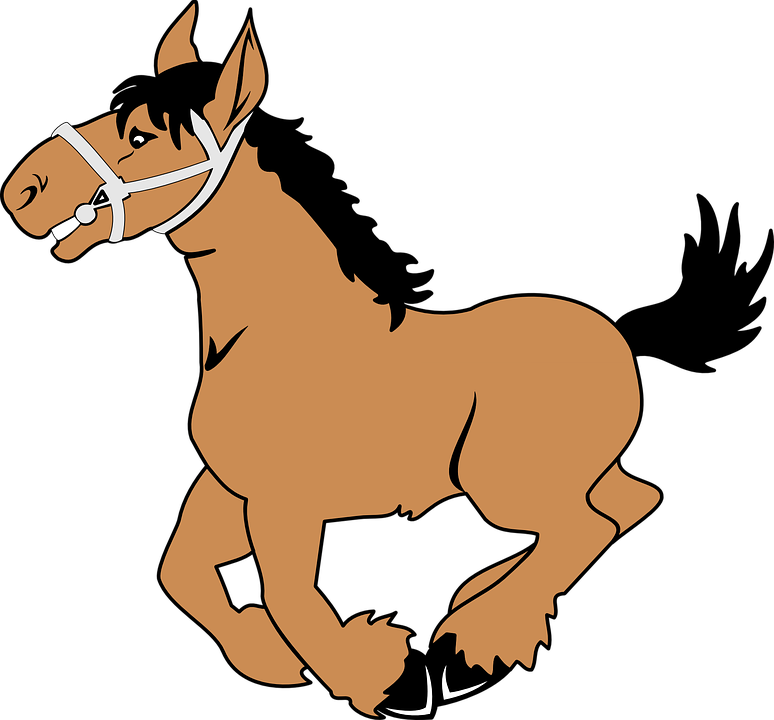 cheval (3)